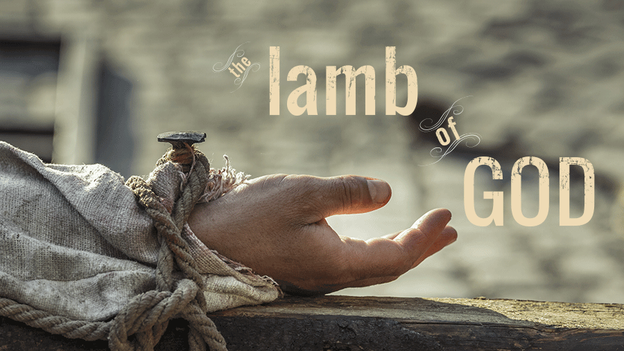 the-lamb-of-godblog